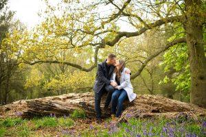 Portrait - Bluebell Woods in Suffolk